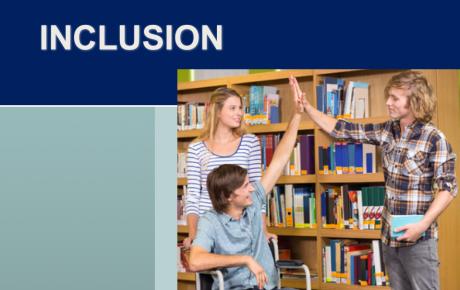 inclusion course